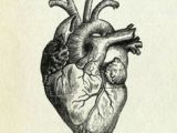 Pencil Drawing Of A Human Heart 1875 Best Human Heart Images In 2019 Feminist Art Embroidery
