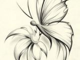 Pencil Drawing Of Flowers and butterflies butterfly Pencil Drawing if It Were A Dragonfly It Would Be Perfect