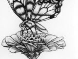 Pencil Drawing Of Flowers and butterflies Drawings Of Flowers and butterflies My Drawing Of A butterfly by