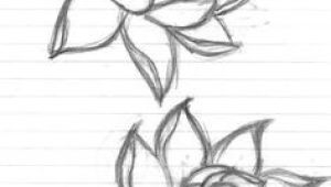 Pencil Drawing Of Lotus Flower 69 Best Pencil Drawing Found Object Sketching Exercise Images