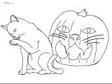 Picture Of A Drawing Of A Cat Coloring Pages Of Animals Preschool Color Pages Animals Luxury