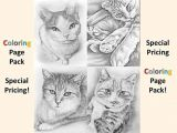 Picture Of A Drawing Of A Cat Fresh Coloring Page Of A Cat Creditoparataxi Com