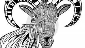 Ram Animal Drawing Ram Head by Svetap Via Dreamstime Animal Line Drawings In