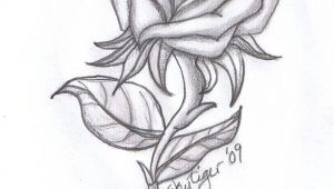 Rose Drawing Tumblr Easy Rose Drawings Rose Pencil Drawing by Skytiger On Deviantart
