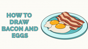 Sandwich Drawing Easy How to Draw Bacon and Eggs Easy Drawings Drawings