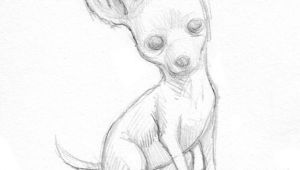 Simple Drawing Of A Chihuahua Dog Easy Drawings Of Chihuahuas Google Search Chihuahua Chihuahua