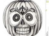 Skull Drawing for Pumpkin Halloween Skull Pumpkin Tattoo Stock Illustration Illustration
