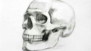 Skull Drawing Front View Skull Drawing Art Drawings Skull Sketch Art