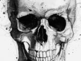 Skull Drawing Hipster Rave by Ark Studies In 2019 Drawings Skull Simple Skull Drawing