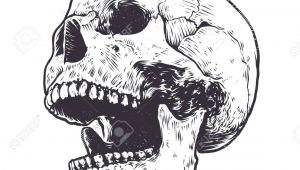 Skull Drawing Mouth Open Image Result for Skull Open Mouth Drawing Tattoo Projects