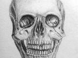 Skull without Jaw Drawing Pin by Megan On Art Drawings Art Drawings Pinterest