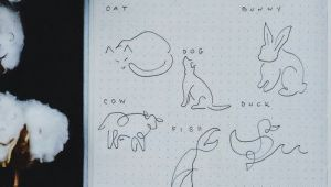 Straight Line Drawing Animals How to Draw Line Art Animals A One Line Drawing Tutorial