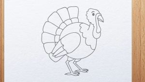 Thanksgiving Drawing Ideas Easy How to Draw A Cartoon Turkey Thanksgiving Day Drawings