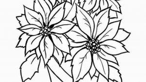 The Best Drawings Of Flowers 25 Fancy Draw A Flower Helpsite Us