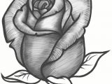 The Steps Of Drawing A Rose Easy Steps to Draw A Flower Vase Art Drawings How to Draw A Vase