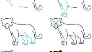 Tiger Drawing Easy Youtube 82 Best Tigers Drawing and Painting Tigers Images Tiger Drawing