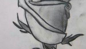 Tonal Drawing Of A Rose 86 Best tonal Images Draw Pencil Art Pencil Drawings