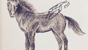 Tumblr Drawing Horse Simple Exercises for Beginners Page 11 Of 30 Horse Drawa Ng