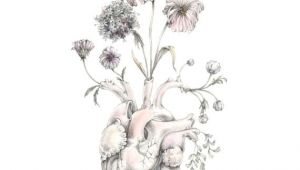 Tumblr Drawing Of Flowers Blooming Heart Painting Art Anatomy Valentine Floral Space