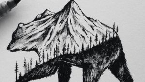 Two Animals Combined Drawing Little Hybrid Illustrations by Sam Larson Bear Art