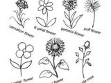 Wildflowers Drawing Easy 1147 Best Drawing Flowers Images In 2019 Doodles Little Tattoos