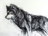 Wolf Drawing Charcoal 2712 Best Charcoal Drawings Images In 2019