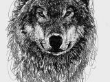 Wolf Drawing Charcoal Wolf Scribble Drawing Scribble Art Scribble Art Scribble Drawings