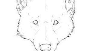 Wolf Drawing Front View 75 Best Draw A Wolf Images Drawing Techniques Drawing Tutorials