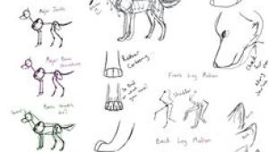 Wolf Drawing Guide 109 Best Wolf Images Wolf Drawings Art Drawings Draw Animals