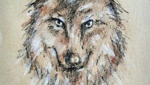 Wolf Drawing Pastel Wolf Drawing In Crayons Art Drawings Crayon Drawings