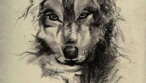 Wolf Drawing Pen and Ink 73 Amazing Wolf Tattoo Designs Ink Wolf Tattoos Tattoos Wolf