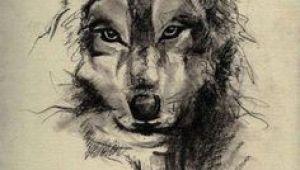 Wolf Drawing Tattoo Design 73 Amazing Wolf Tattoo Designs Ink Wolf Tattoos Tattoos Wolf
