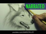 Wolf Drawing Tutorial Youtube How to Draw A Dog Narrated Step by Step Youtube