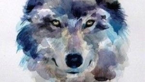 Wolf Drawing Watercolor How to Draw A Wolf Draw A Wolf Watercolor Step 7 Of 7 Push