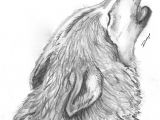 Wolf Drawing with Pencil Pin by Margaret Luke On Wolves Wolf Drawings Pencil Drawings