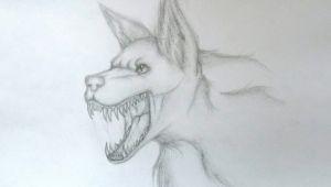 Wolf Jaw Drawing My Wolf Drawing A A Od Y O U T U Bea A Amino