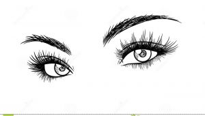 Woman S Eye Drawing Beautiful Woman Eyes with Eyelash Extensions Sketch Stock Vector